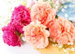 料理台装飾花・花束